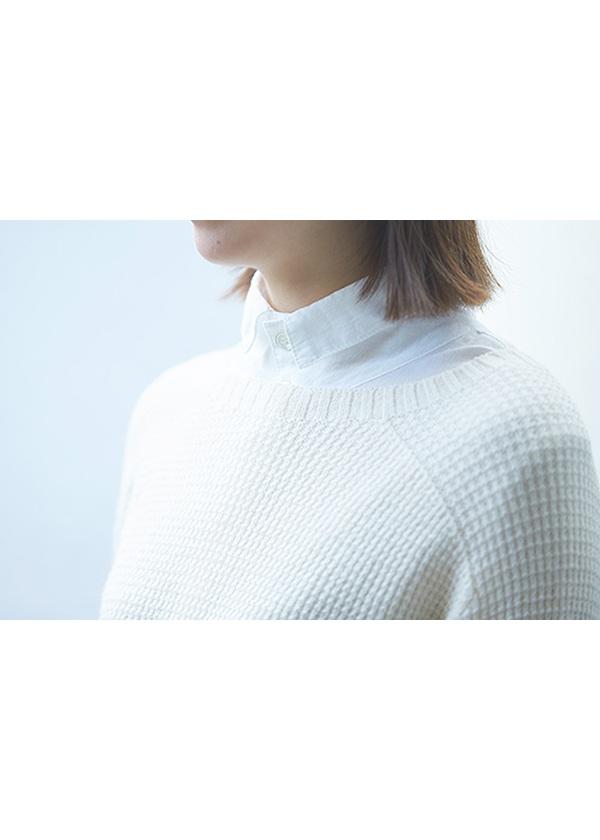 Plantation L-line / コットン綾 / 長袖ブラウス