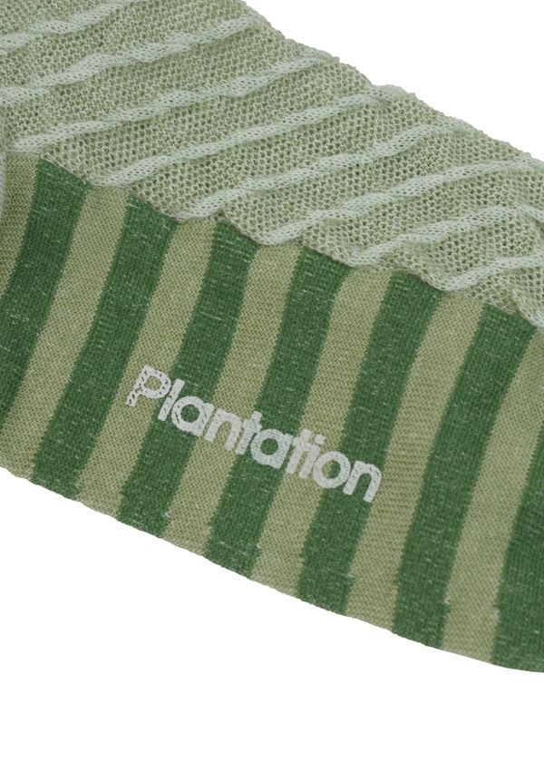 Plantation / MIXボーダーソックス / ソックス