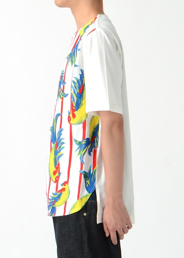 TSUMORI CHISATO / S メンズ バードプリントT / Tシャツ