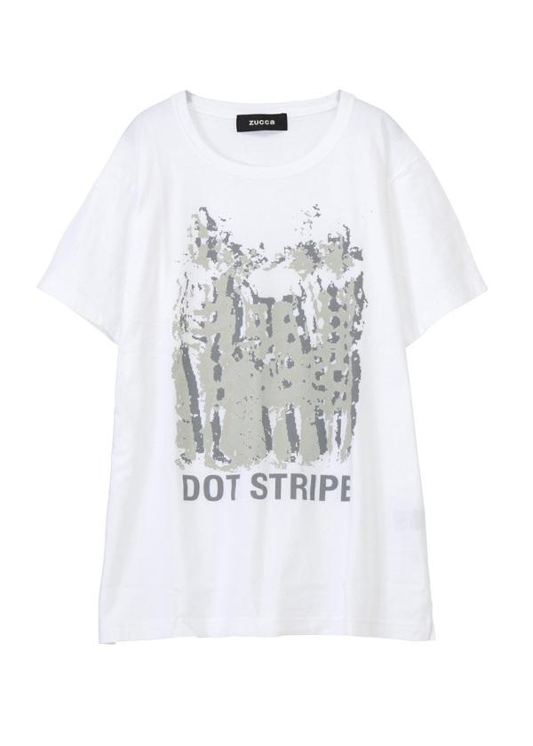 ZUCCa / DOT STRIPE Tシャツ / Tシャツ 白