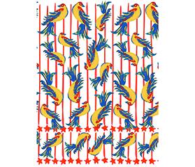 BEHIND DESIGN JULY「BIG BIRD&GUATEMALA BIRD」