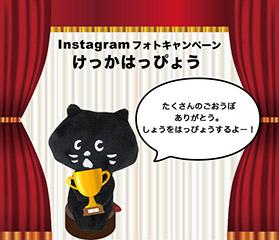 にゃー Instagramフォトキャンペーン結果発表